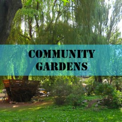 exhibits-community-gardens
