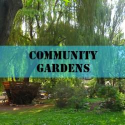 exhibits-community-gardens